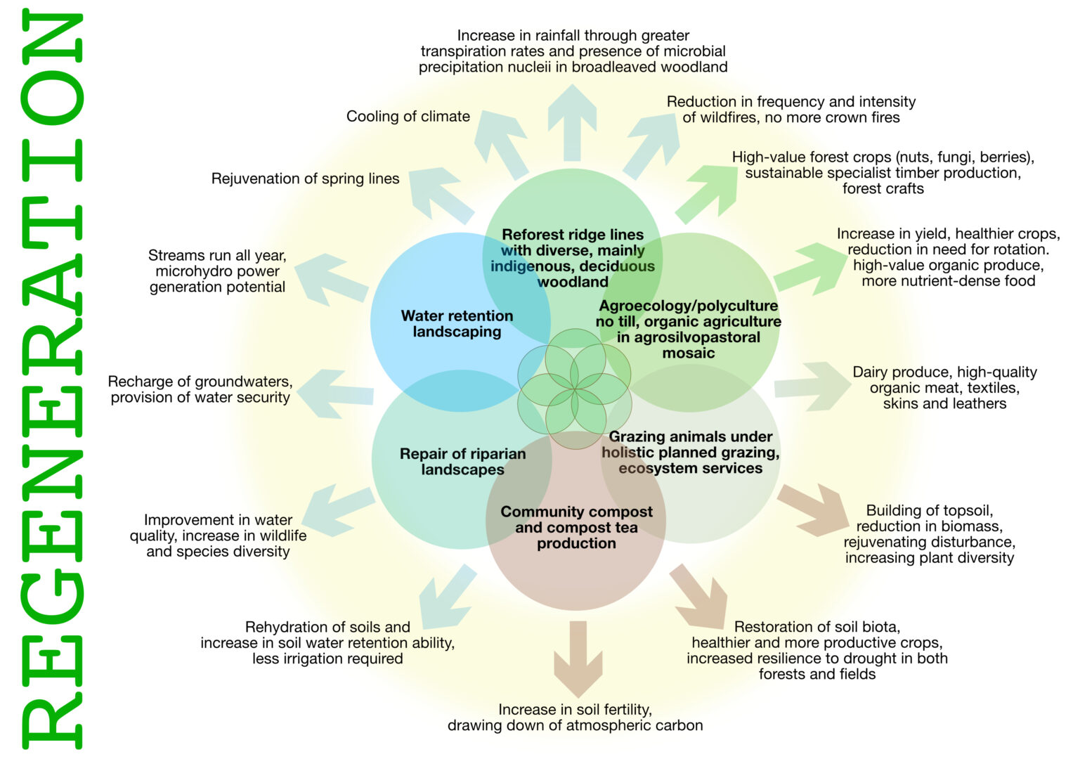 Cycles of syntropy: regenerative practives bringing about environmental transformation