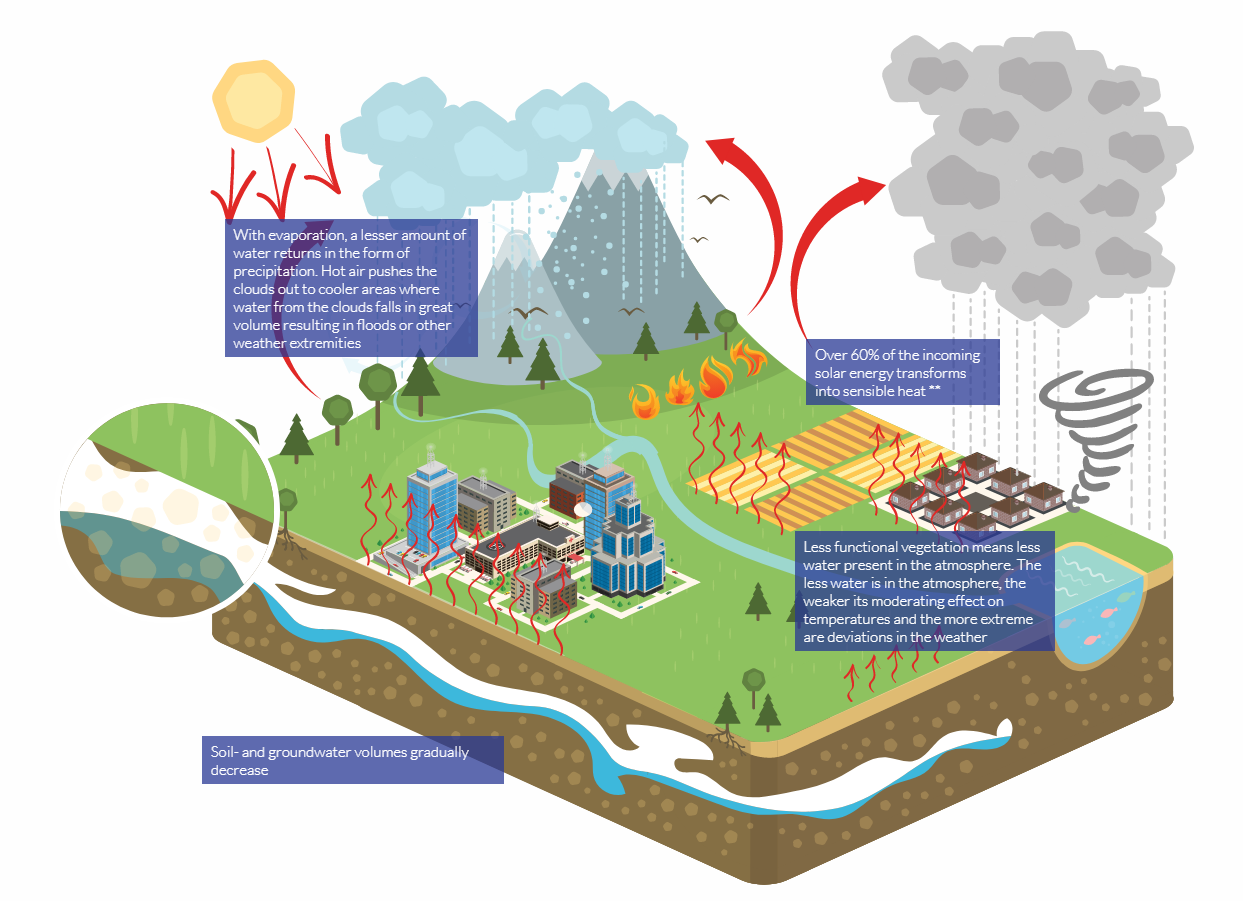 Infographics of the dynamics of small water cycles from Rain for Climate